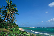 South Sound Beach,<br /> Grand Cayman, <br /> ( Caribbean Sea )