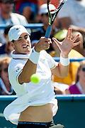 USA's John Isner hits a return to Argentina's Juan Martin Del Potro during their men's final singles match at the Citi Open ATP tennis tournament in Washington, DC, USA, 4 Aug 2013. Del Potro won the final 3-6, 6-1, 6-2.