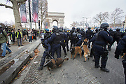 December, 8th, 2018 - Paris, Ile-de-France, France: Riot police handlers with dogs on Champs Elysees. The French 'Gilets Jaunes' demonstrate a fourth day. Their movement was born against French President Macron's high fuel increases. They have been joined en mass by students and trade unionists unhappy with Macron's policies. Nigel Dickinson