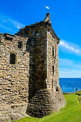 Front elevation of St Andrews Castle, St Andrews, Fife, Scotland<br /> <br /> (c) Andrew Wilson | Edinburgh Elite media