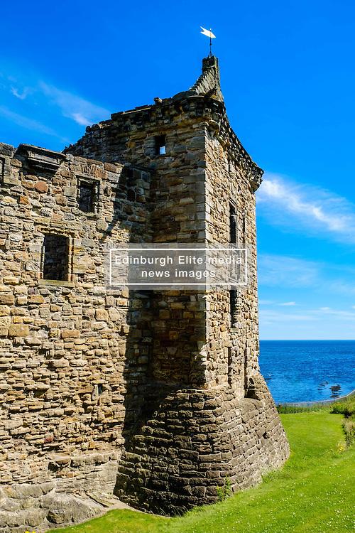 Front elevation of St Andrews Castle, St Andrews, Fife, Scotland<br /> <br /> (c) Andrew Wilson   Edinburgh Elite media