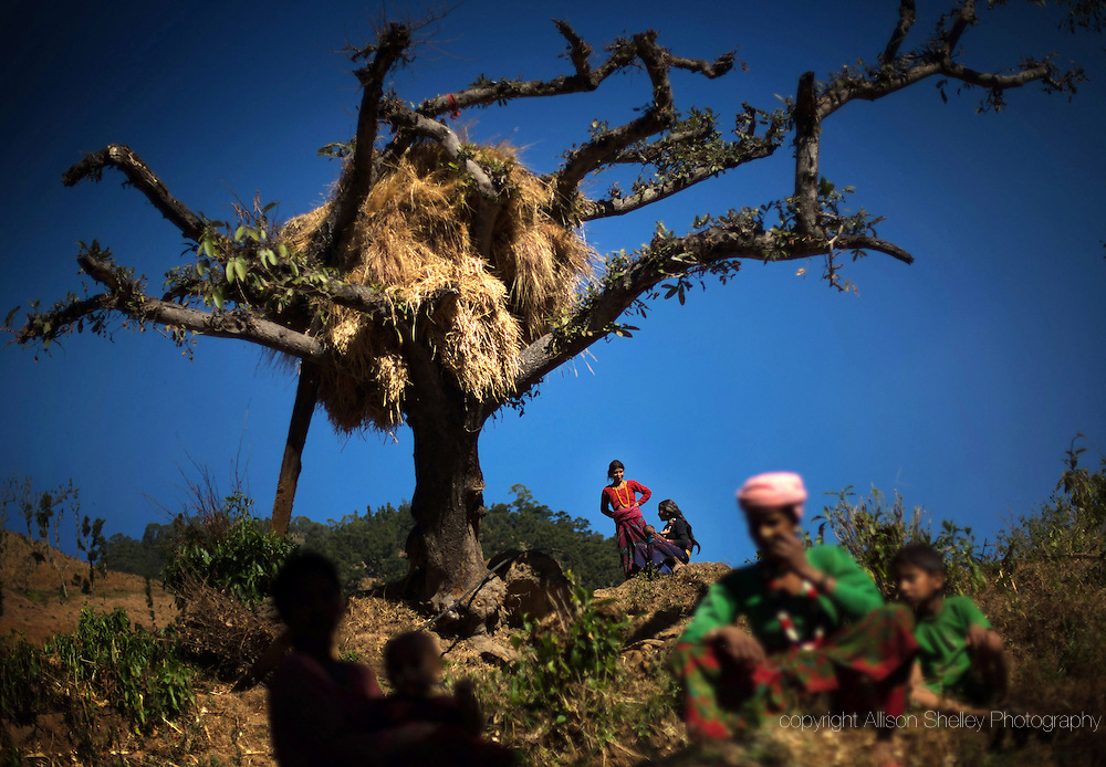 Family members of Jeera sit under a dead tree in Kalekanda village, Achham, Nepal, on the site where two of her baby girls were killed in separate overnight attacks by a jackal and a snake as they observed chaupadi (or chhaupadi) six and eight years ago respectively.