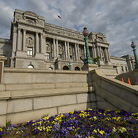 The U.S. Library of Congress building rises behind spring garden flowers in Washington, D.C.