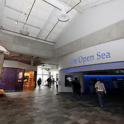 The Open Sea exhibit at the Monterey Bay Aquarium, which is located on Cannery Row in Monterey, California, on Friday July 13, 2012.(AP Photo/Alex Menendez)