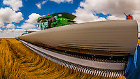 Farmers preparing their combines for a day of work during the wheat harvest, Schields & Sons Farming, Goodland, Kansas USA.