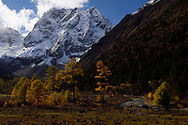 Autumn colours and sceneries in the U-shaped valley Snow covered mountain landscape and vegetation in autumn colours, Baima Snow Mountain Nature reserve, Yunnan, China
