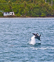 Spinner Dolphins in Guam's Piti Bay and scenics along Guam's Asan national park unit.