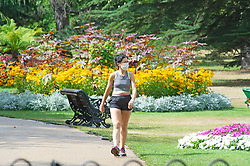 ©Licensed to London News Pictures 17/08/2020             Greenwich, UK. A lady keeping fit by walking. Between the heavy rain and thunderstorms the sunshine comes out showing off the early autumnal leaves on the ground in Greenwich park, Greenwich, London. Photo credit: Grant Falvey/LNP