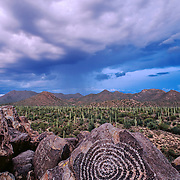 Native American rock art or petroglyph at Signal Hill in Saguaro National Park near Tucson Arizona USA