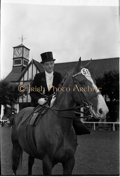 """09/08/1962<br /> 08/09/1962<br /> 09 August 1961<br /> RDS Horse Show, Ballsbridge Dublin, Thursday. <br /> Picture shows """"Louise"""", a hunter mare owned by Mr R.G. Patton of Kilnacloy, Monaghan and ridden by the Marchioness of Headfort, Kells, Co. Meath in the Ladies Hunter Ridden Side-saddle competition at the show."""