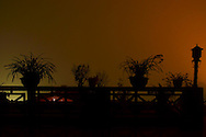 Silhouette plants on a balcony in a foggy night. Behind them, an orange light comes from city's streets in Sapa surroundings, Lao Cai province, North Vietnam.