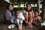August 2012: 40+yrs old Den Along (LHS) daughter of Along Sega, with her daughter Senorita (2nd from right), 24 yrs old, and Senorita's 2 yr old son Dimas (RHS), and his cousin Yorni (2nd from LHS). They are indigenous Penan native people, who were once nomadic hunter gatherers and are now sedentary. Long Gita, Limbang district, Sarawak, Borneo 2012<br /> <br /> Penan indigenous native people, nomadic decades ago, have been forced to move up-river, to settled accomodation, far from their original hunter-gatherer grounds. The sound of chainsaws is not too distant, oil palm plantations are looming and the pipeline is right next door. Long Adang and Long Gita, Limbang Sarawak, Borneo..The huge Petronas Sabah-Sarawak pipeline is being built across the Borneo rainforest through native areas. Petronas is the government cash cow which funds about 45% of its budget. New roads are being built, though much of the transport follows the existing roads and infrastructure created by logging. Whilst the government heralds the project as a source of jobs for local people, it is unlikely to bring much but wanton damage to rainforest habitat and paving the way for further deforestation by oil palm plantations. Sarawak's primary rainforests have been systematically logged over decades, threatening the sustainable lifestyle of its indigenous peoples who relied on nomadic hunter-gathering and rotational slash & burn cultivation of small areas of forest to survive. Now only a few areas of pristine rainforest remain; for the Dayaks and Penan this spells disaster, a rapidly disappearing way of life, forced re-settlement, many becoming wage-slaves. Large and medium size tree trunks have been sawn down and dragged out by bulldozers, leaving destruction in their midst, and for the most part a primary rainforest ecosystem beyond repair. Nowadays palm oil plantations and hydro-electric dam projects cover hundreds of thousands of hectares of what was the world's oldest rainforest ecosystem