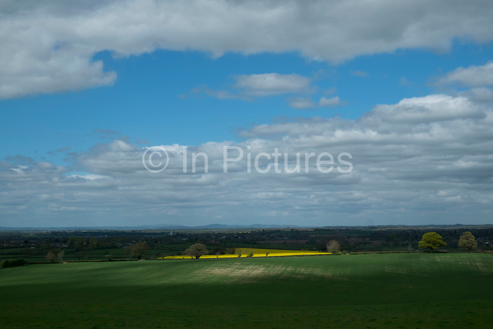 Spring Oil Seed Rape fields in countryside near Great Comberton at Bredon Hill in Worcestershire, England, United Kingdom.