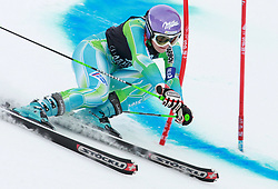 SKI ALPIN: Weltcup, Riesenslalom, Damen, Aspen, 28.11.2009<br /> Tina MAZE (SLO)<br /> Photo by Pixathlon / Sportida Photo Agency