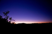 Pocos de Caldas_MG, Brasil...Reserva Particular do Patrimonio Natural (RPPN) em Pocos de Caldas...Private Natural Heritage Reserve (RPPN) in Pocos de Caldas...Foto: JOAO MARCOS ROSA / NITRO ..Foto: JOAO MARCOS ROSA / AGENCIA NITRO