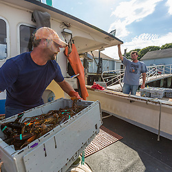 """Brandon Olsen (left), crew, and captain Ernie Wallace of """"Reel Catch"""" unload their haul at the Friendship Lobster Co-op in Friendship, Maine."""