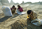 Afghan children scavenge for small pieces of wood at a brick factory to take home to cook with near Kabul July 14, 2002. In the absence of gas or electric heating poor families must still rely on burning wood or coal as a source of heat for cooking and boiling water. Dozens of children flock to the brick factory to collect wood scraps that are left over after the fires in the kilns burn out.
