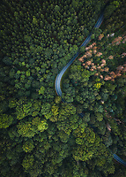 Abstract aerial view of winding road trough forrest in National Park Sächsische Schweiz, Germany.