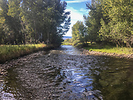 The scene along the Lemhi River as it passes the property on Wednesday, Aug. 10, 2016, in Salmon, Idaho. (© 2016 Cindi Christie)