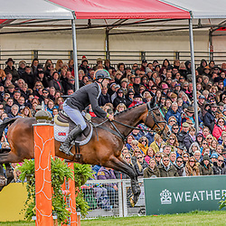 Ciaran Glynn Badminton Horse trials Gloucester, England UK May 2019. Ciaran Glynn Equestrian at the Badminton Horse Trials representing Ireland riding November night in the Badminton horse trials 2019 Badminton Horse trials 2019 Winner Piggy French wins the title