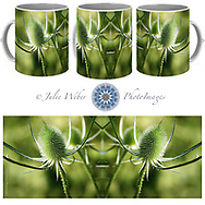 Coffee Mug Showcase 2 - Shop here: https://2-julie-weber.pixels.com/products/wonderful-teasel-julie-weber-coffee-mug.html