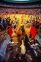 Encierro (Running of the Bulls), Fiesta of San Fermin, Pamplona, Spain