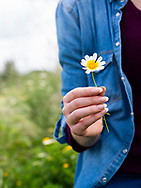 Woman in casual clothes holding a daisy