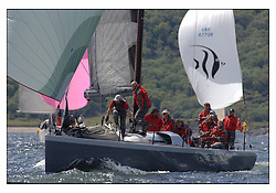 The third days racing at the Bell Lawrie Yachting Series in Tarbert Loch Fyne. Perfect conditions finally arrived for competitors on the three race courses...GBR 744R Hotel California a C10 44  in IRC Class 1