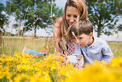 Woman with her son looking with a magnifying glass at yellow flowers on a meadow in the countryside, Bavaria, Germany