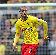 Watford Adlene Guedioura during the Sky Bet Championship match between Brighton and Hove Albion and Watford at the American Express Community Stadium, Brighton and Hove, England on 25 April 2015. Photo by Phil Duncan.