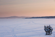 View of Lake Inari at dawn, looking northeast across the frozen surface. Snowmobile tracks are visible across the expanse.