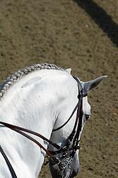 European Dressage Championships Hickstead 2003<br /> Photo © Hippo Foto