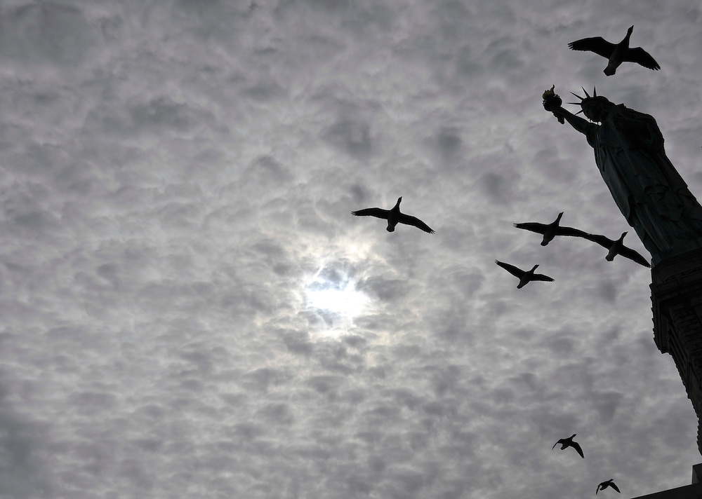 Geese fly past the Statue of Liberty in New York, Saturday, Feb. 26, 2011.