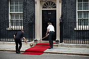 A red carpet is brushed ahead of King Abdullah II of Jordan arrival for a meeting with the Prime Minister at 10 Downing Street on 7 August, 2019 in London, United Kingdom.
