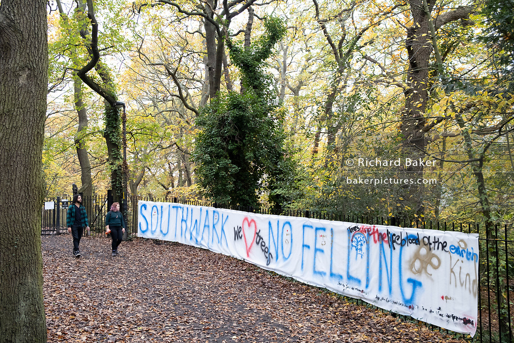Activists' banners in Sydenham Hill Woods against the proposed felling of two 100+ year-old oak trees, threatened by Southwark Council because of their proximity to 'Pissarro's' footbridge whose renovation has been deemed necessary by the local authority, on 11th November 2020, in London, England. The Nunhead to Crystal Palace (High Level) railway once passed through the Wood and Impressionist artist  Camille Pissarro (1830–1903) famously painted a railway landscape from the bridge in the 1870s. Sydenham Hill Wood forms part of the largest remaining tract of the old Great North Wood, a vast area of worked coppices and wooded commons that once stretched across south London. The habitat is home to more than 200 species of trees and plants as well as rare fungi, insects, birds and woodland mammals.