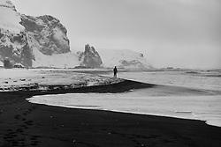 Tourists walking the beach in Vik in Myrdalur, Iceland - Ferðamenn í Vík í Mýrdal