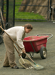 Chelsea Williams, a zookeeper at the Oakland Zoo, cleans up after the goats, Tuesday, Oct. 23, 2012 in Oakland, Calif. Williams, an Oakland native who attended UC-Santa Cruz, has been a keeper at the zoo for three years, caring for animals as varied as baboons, bats and river otters. (D. Ross Cameron/Staff)