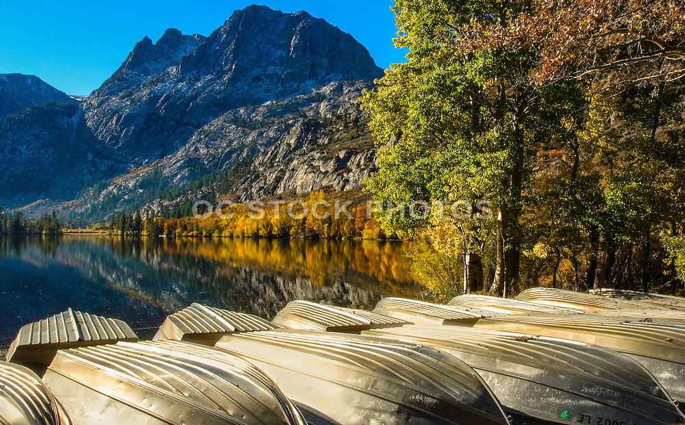 Scenic Fall Colors in the High Sierras