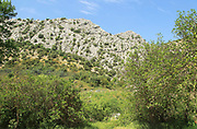 Limestone rock outcrop near Benaojan, Serrania de Ronda mountains, Malaga province, Spain