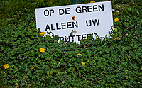 AMSTERDAM  - NVG / NGF / Open Golfdagen / Golfclub Ookmeer .     kennismaken met golf. , Op de green alleen uw putter,    COPYRIGHT KOEN SUYK