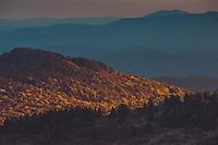 Grayson Highlands State Park