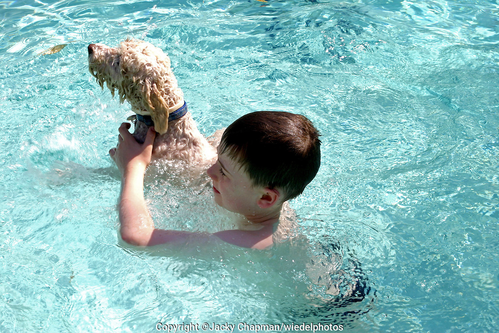 Young boy and his dog swimming together in a pool
