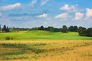 Green meadows and golden fields in hot summer day, near Nesaules kalns, Vidzeme, Latvia Ⓒ Davis Ulands | davisulands.com