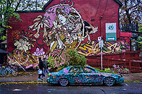 The Garden Car, Kensington Market