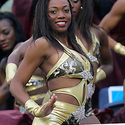 A member of the BCC 14 Karat Gold Dancers performs during the Florida Classic NCAA football game between the FAMU Rattlers and the Bethune Cookman Wildcats at the Florida Citrus bowl on Saturday, November 22, 2014 in Orlando, Florida. (AP Photo/Alex Menendez)