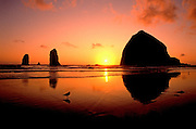 Image of Haystack Rock with seagulls at Cannon Beach, Oregon, Pacific Northwest by Randy Wells