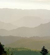 Early morning overlooking tea plantations in Nuwara Eliya, the Central Highlands of Sri Lanka.