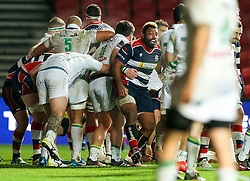 Jamal Ford-Robinson of Bristol Rugby celebrates after Chris Brooker scores a try - Rogan Thomson/JMP - 11/12/2016 - RUGBY UNION - Ashton Gate Stadium - Bristol, England - Bristol Rugby v Pau - European Rugby Challenge Cup.