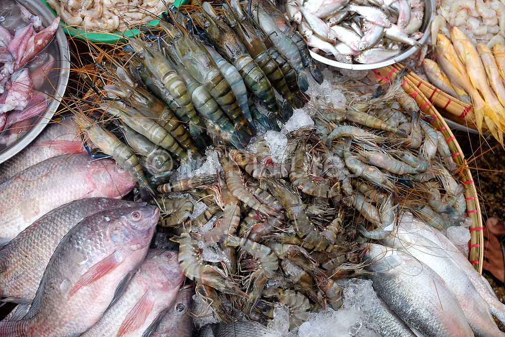 Seafood for sale at an early morning street market in Yangon on 29th March 2016, Myanmar.  A large variety of local products are available for sale in fresh markets all over Yangon, all being sold on small individual stalls