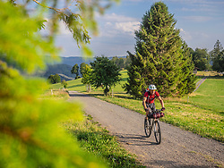 Mountain biker Riding on country road near Todtnauberg, Baden-Wuerttemberg, Germany